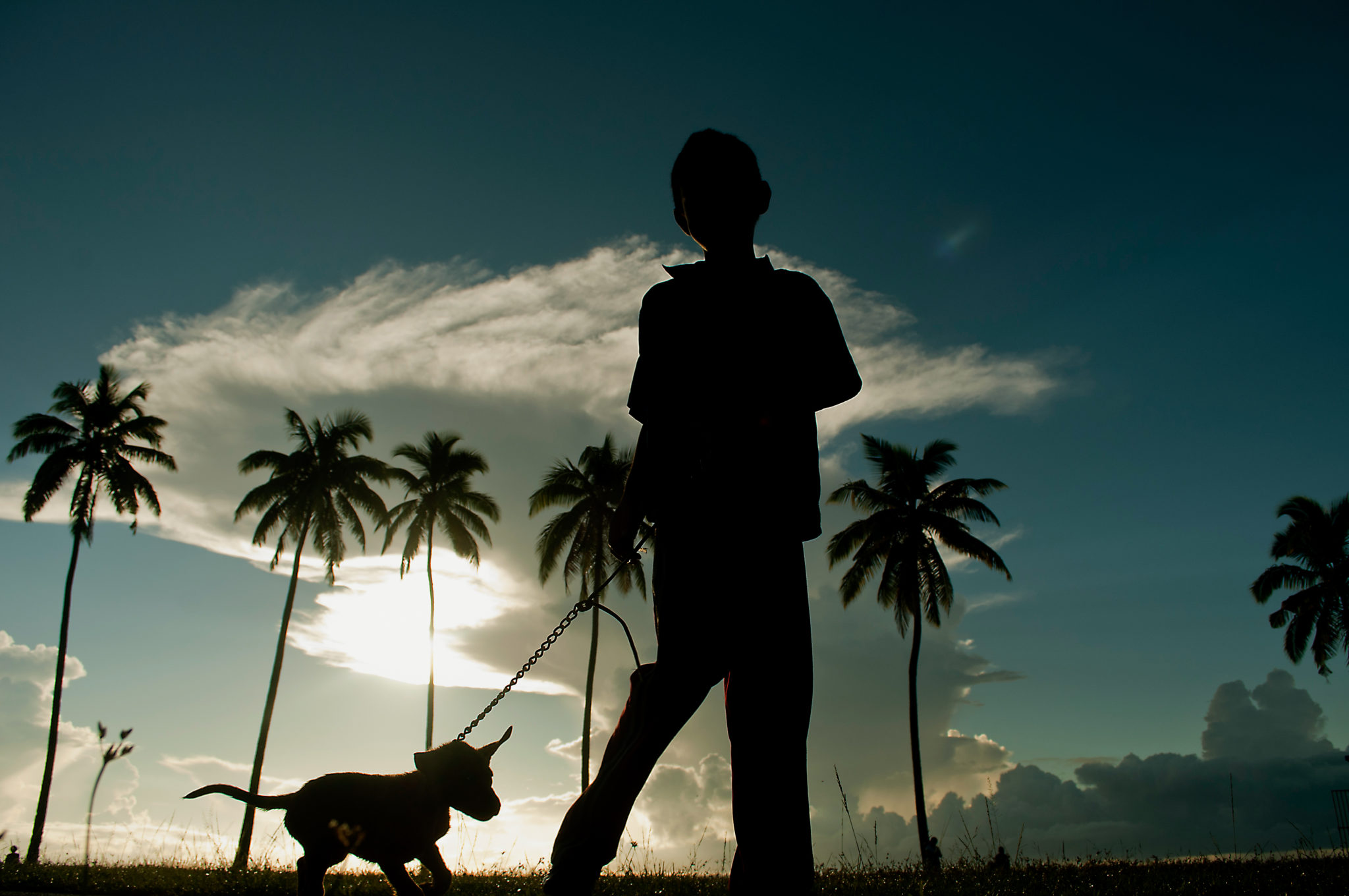 Fiji-Islands-Boy-Dog