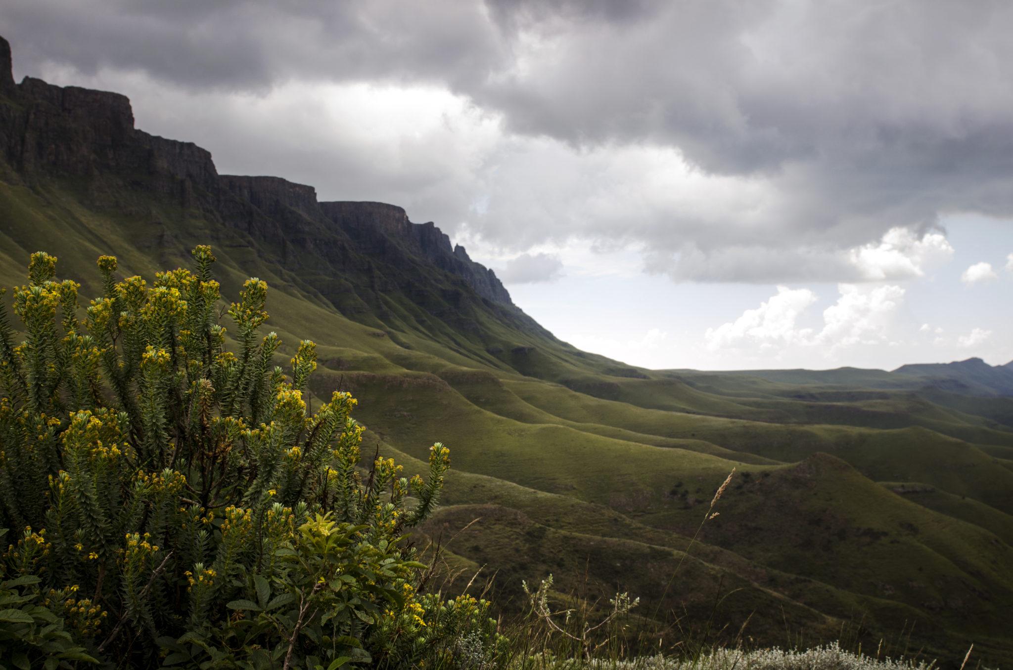 Sani-Pass-Drakensberg