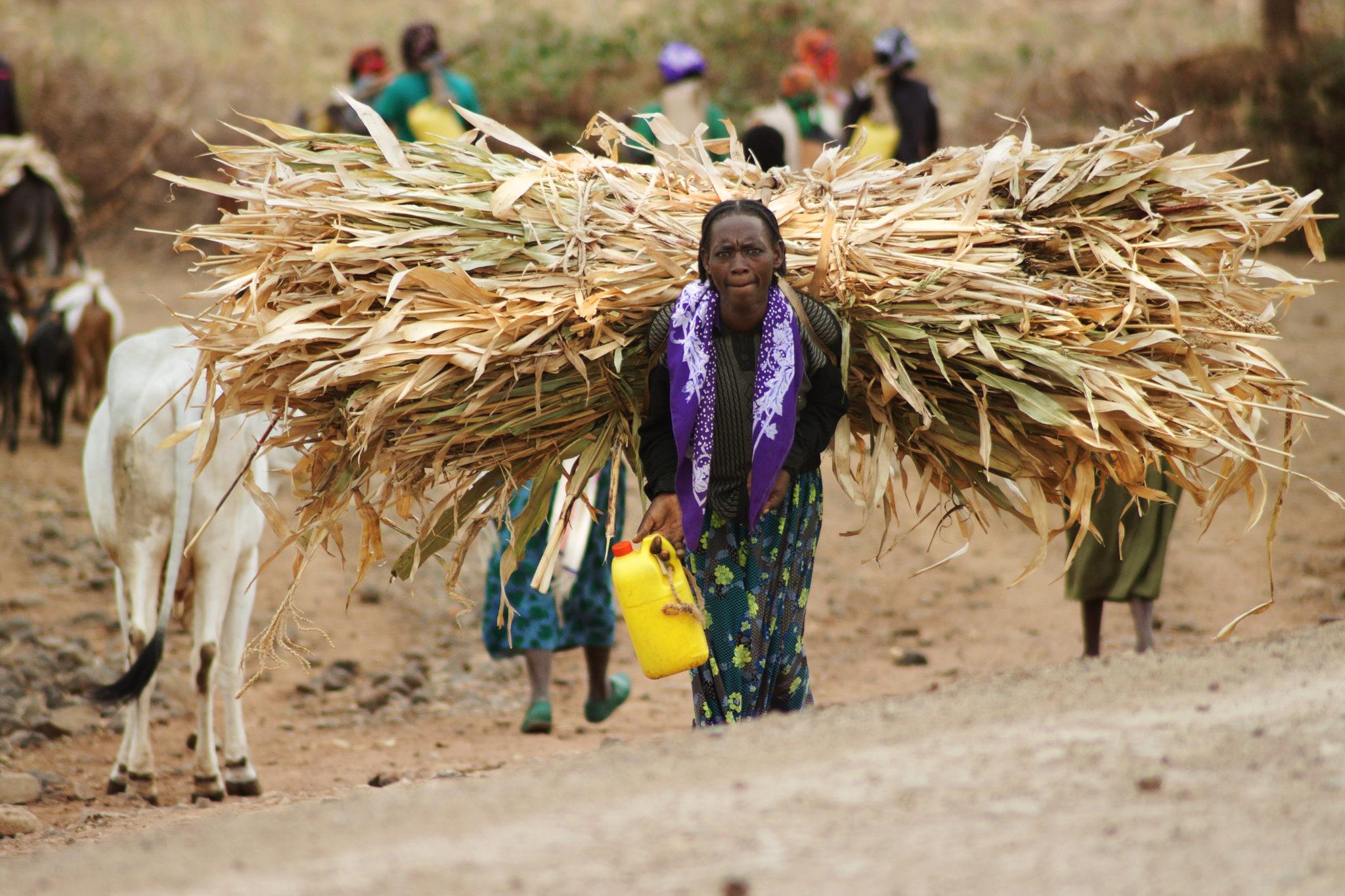 Southern-Ethiopia-Human-Zoo-Jinka-Woman
