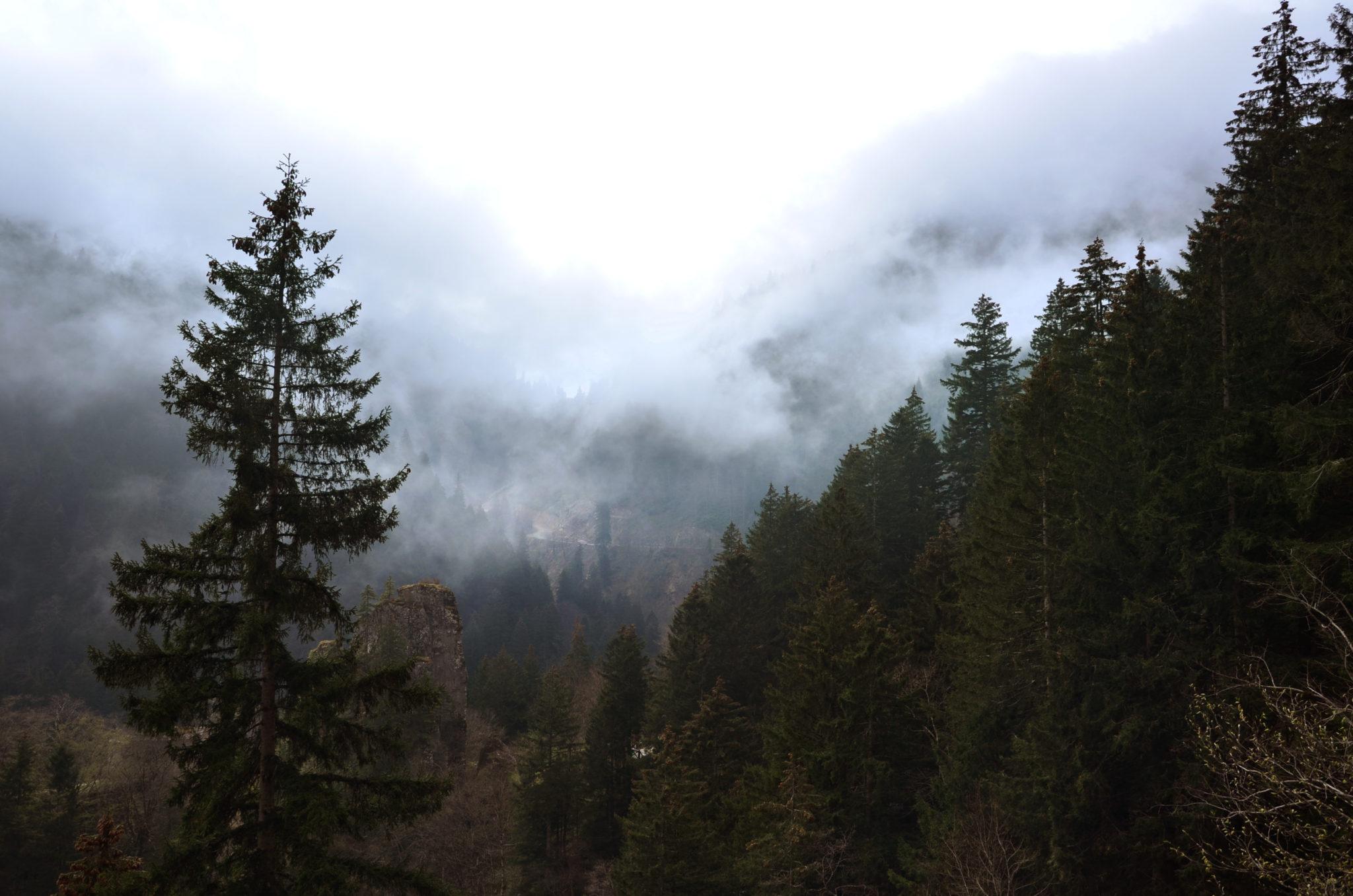 Sumela-Monastery-fog