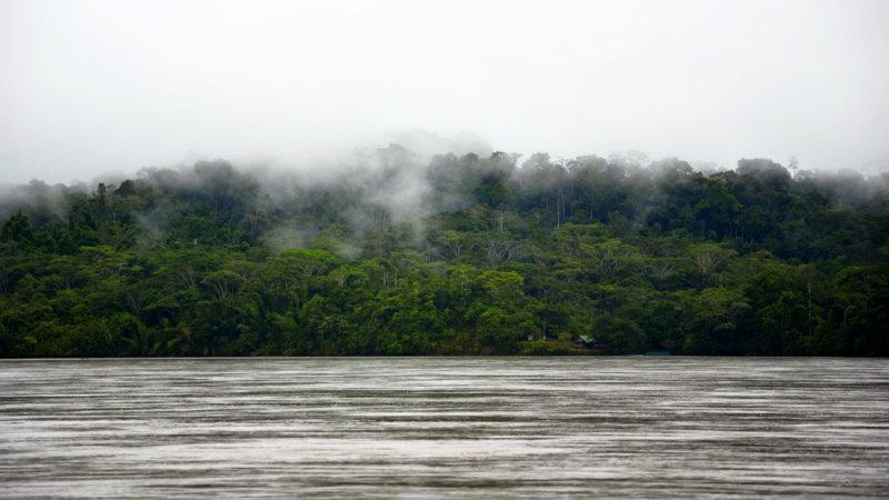ecuador-piranha-fish-napo-river