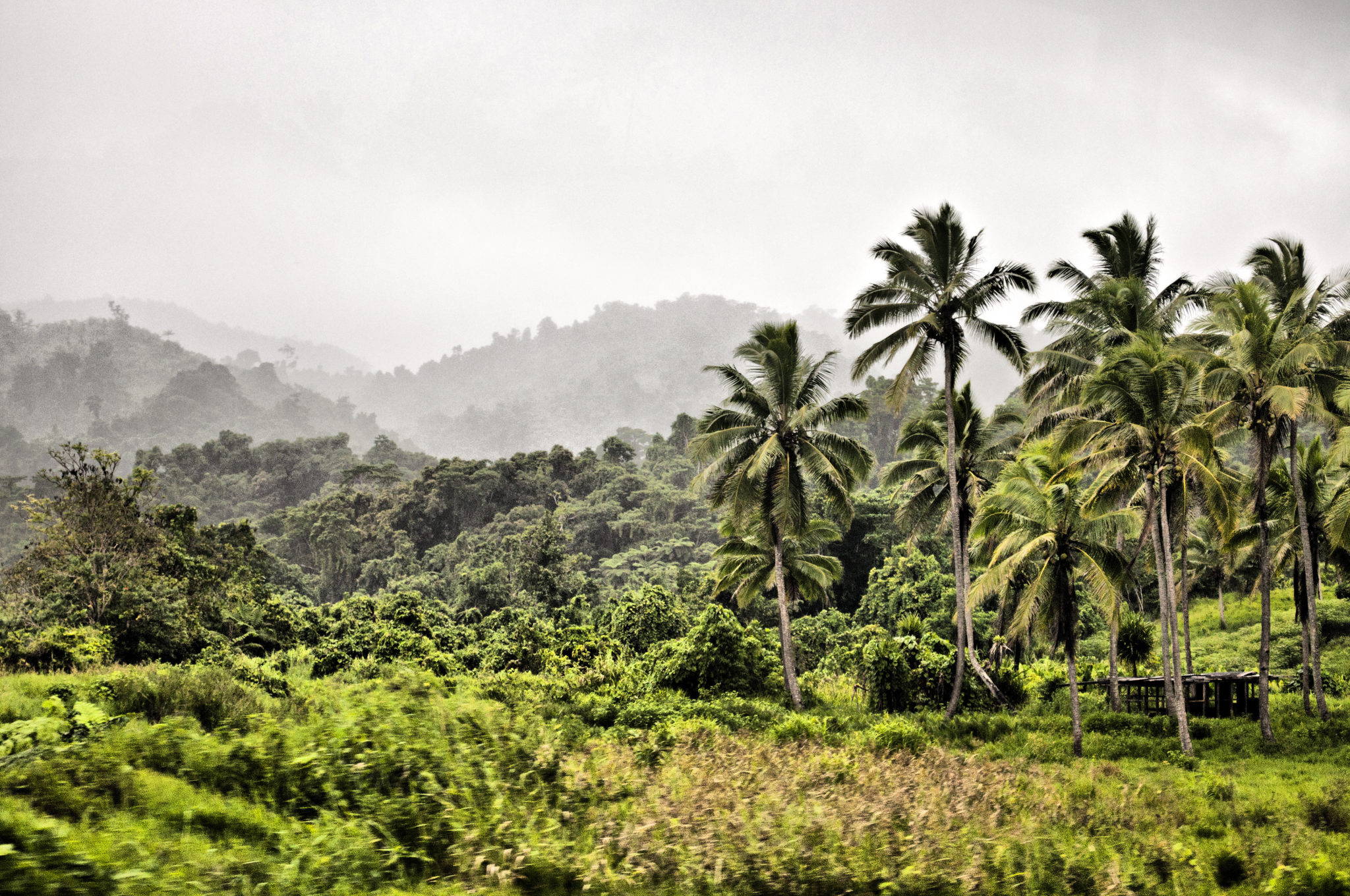 Fiji-travel-landscape