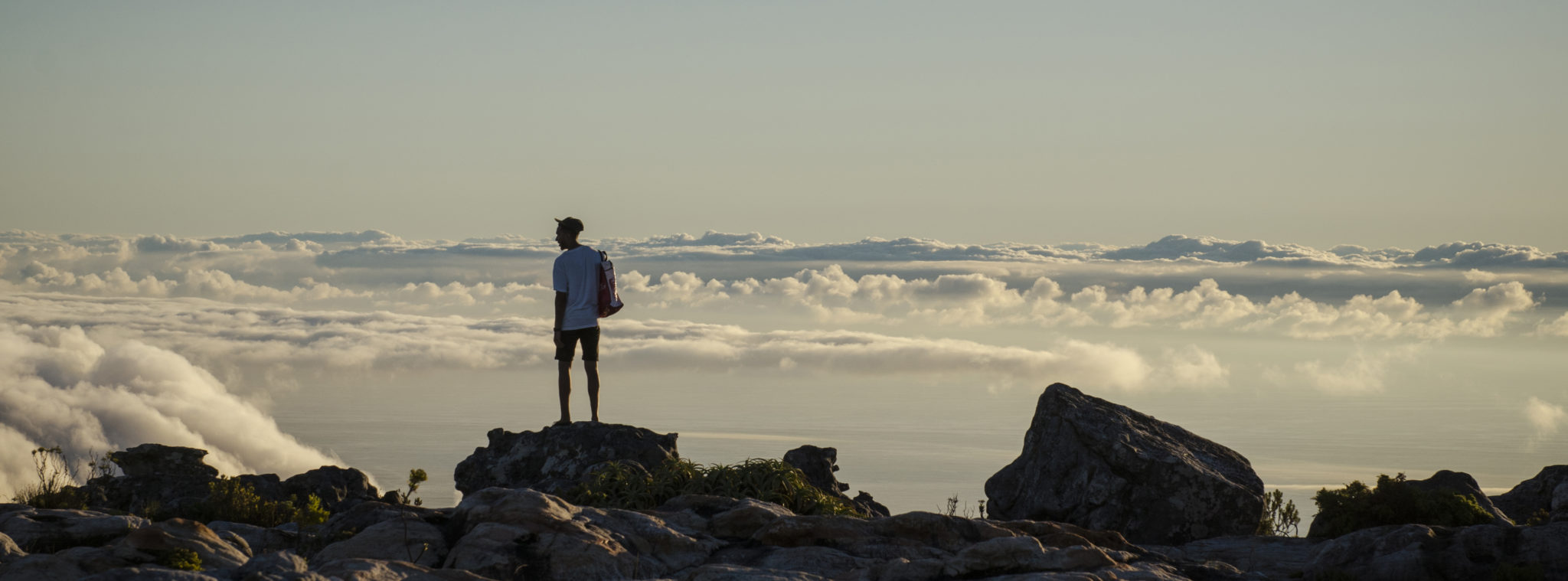 Things-to-do-in-South-Africa-Cape-Town-Tablemountain-Nationalpark-Slider