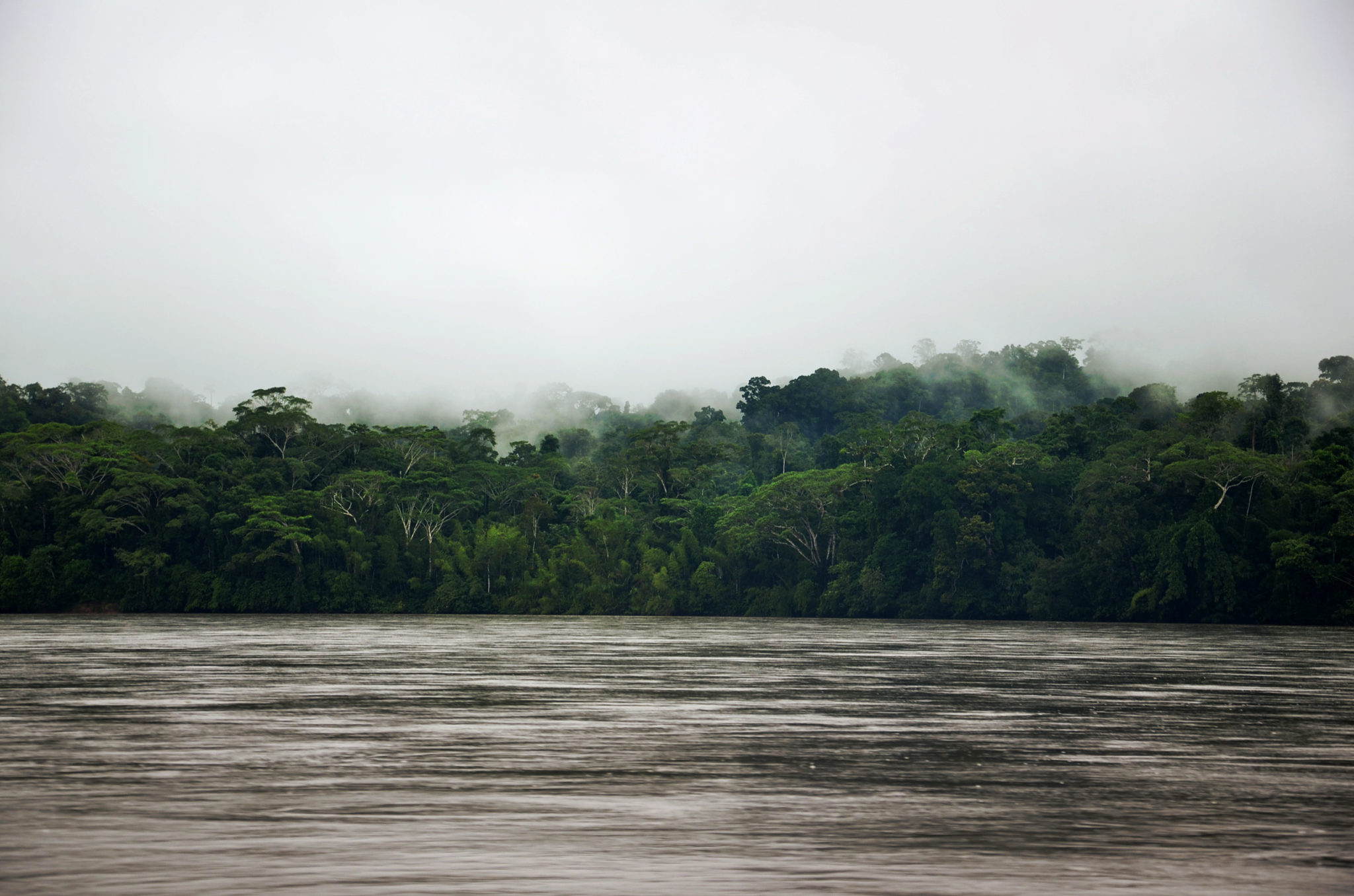 Things-to-see-in-Ecuador-Napo-river-Yasuni-Nationalpark