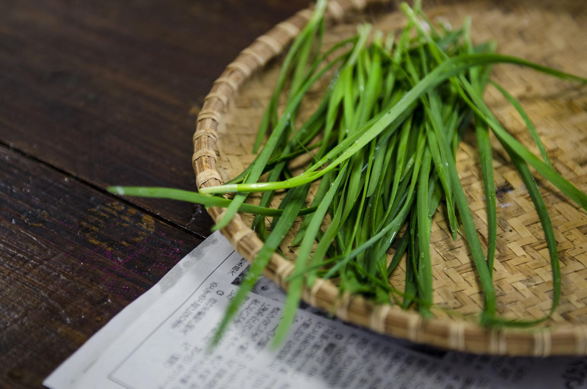 Ishigaki-Island-greens-cooking-in-japan