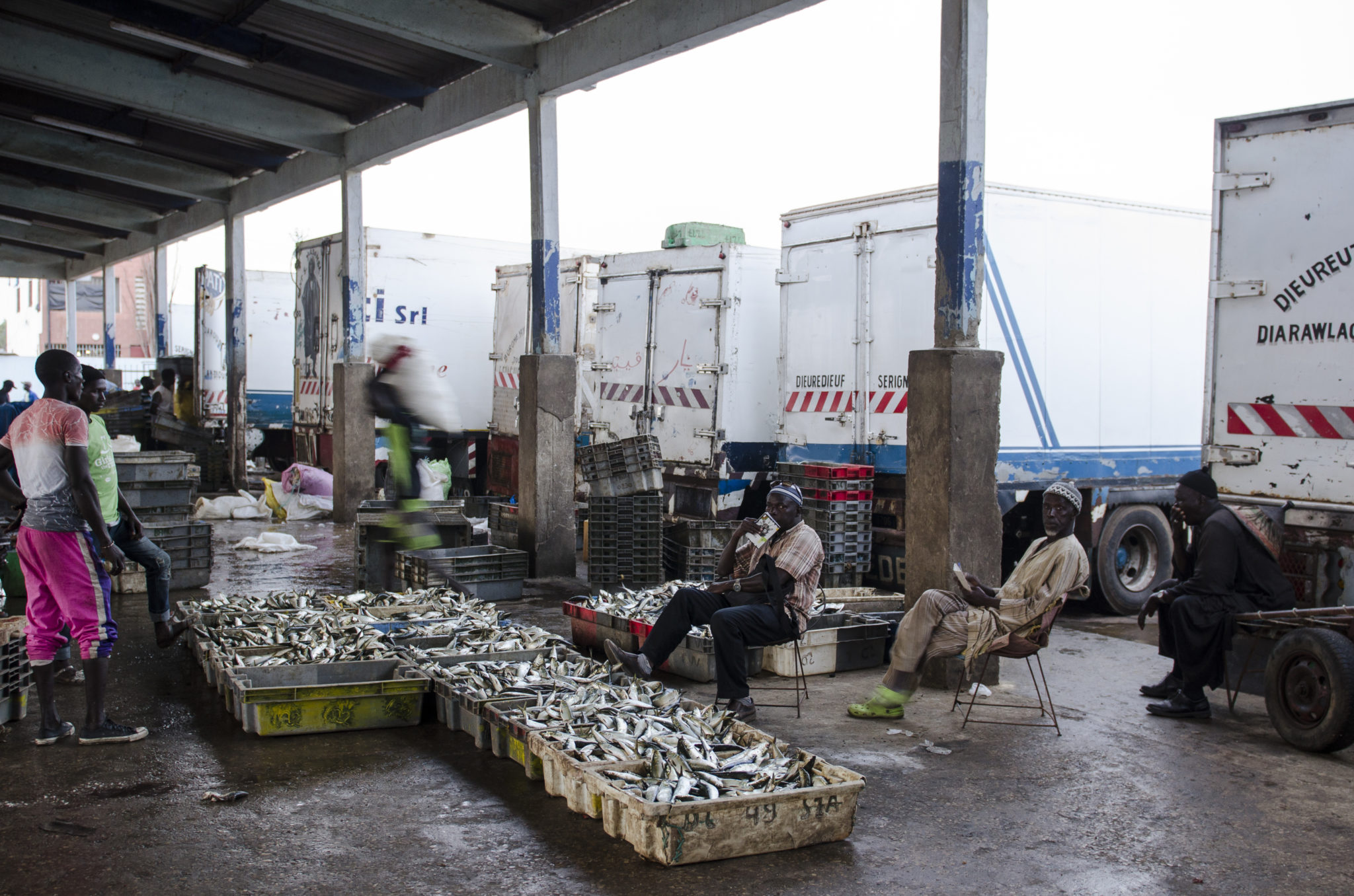 Fish-market-Mbour-cars