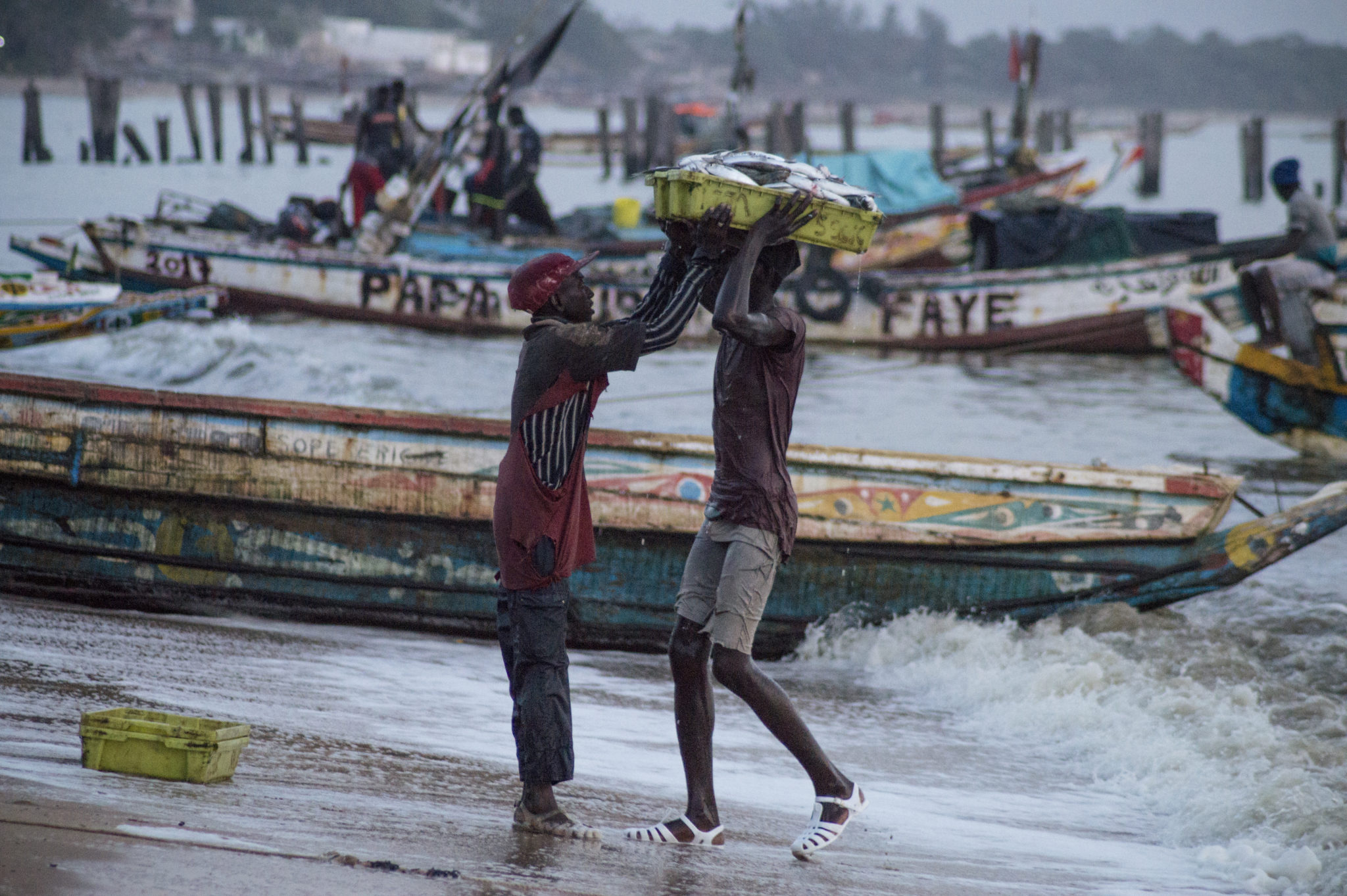 Fish-market-Mbour-fishermen-in-water