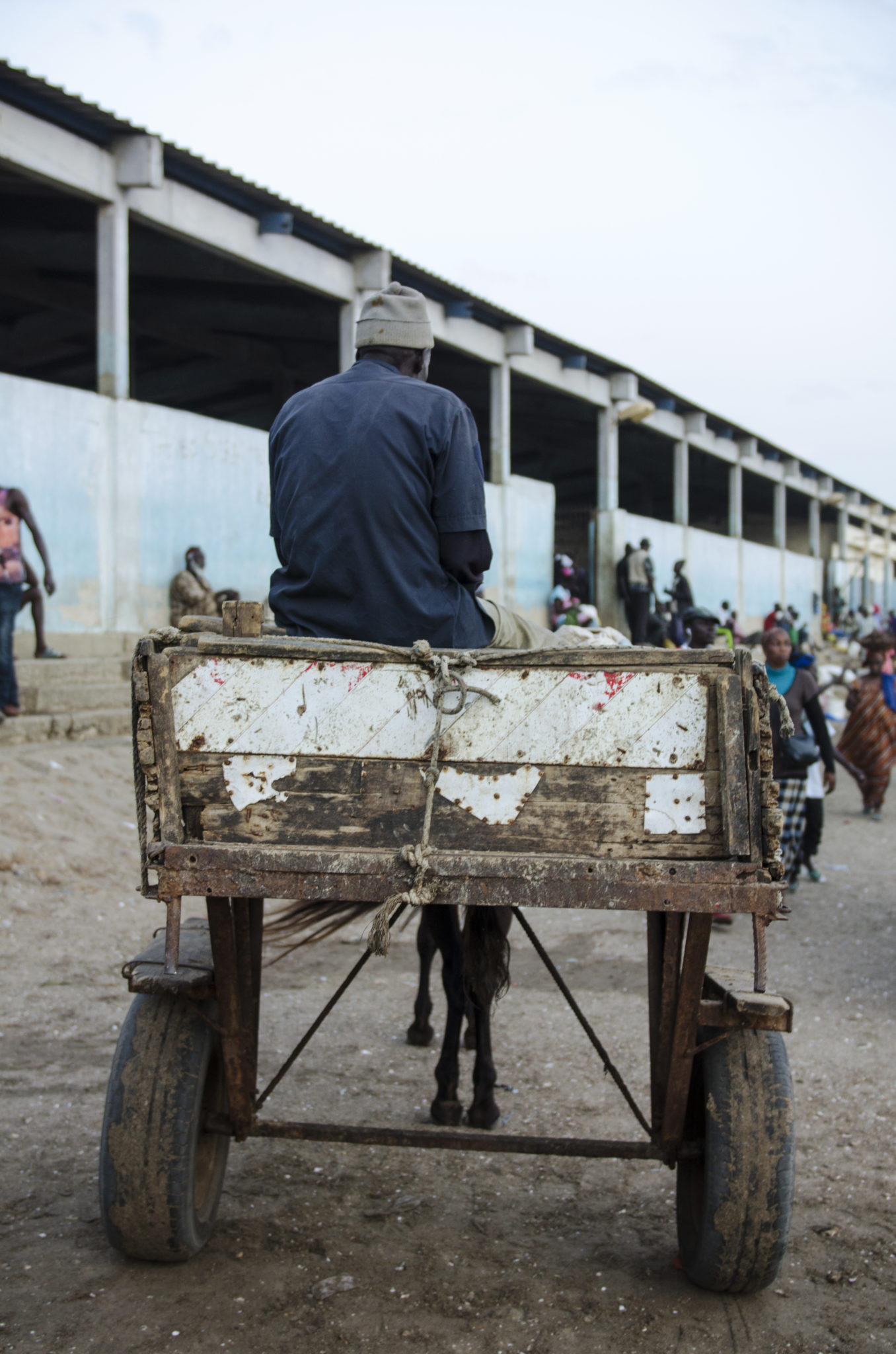 Fish-market-Mbour-horse-carriage