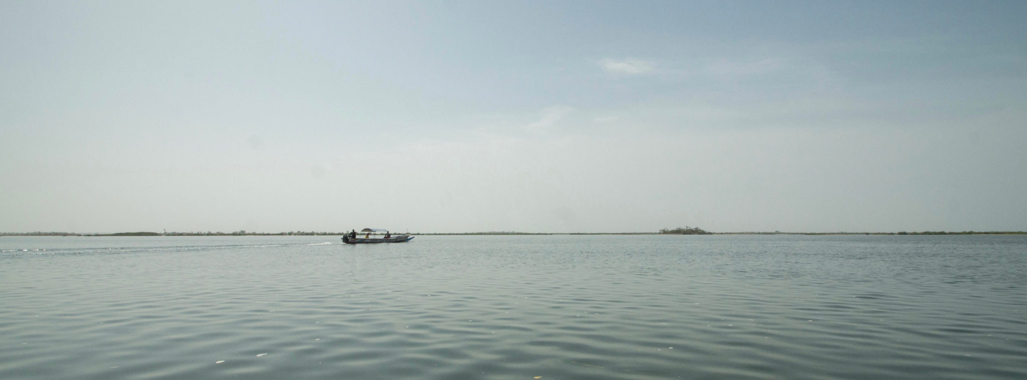 Calm and relaxing: Welcome to the Sine Saloum Delta in Senegal