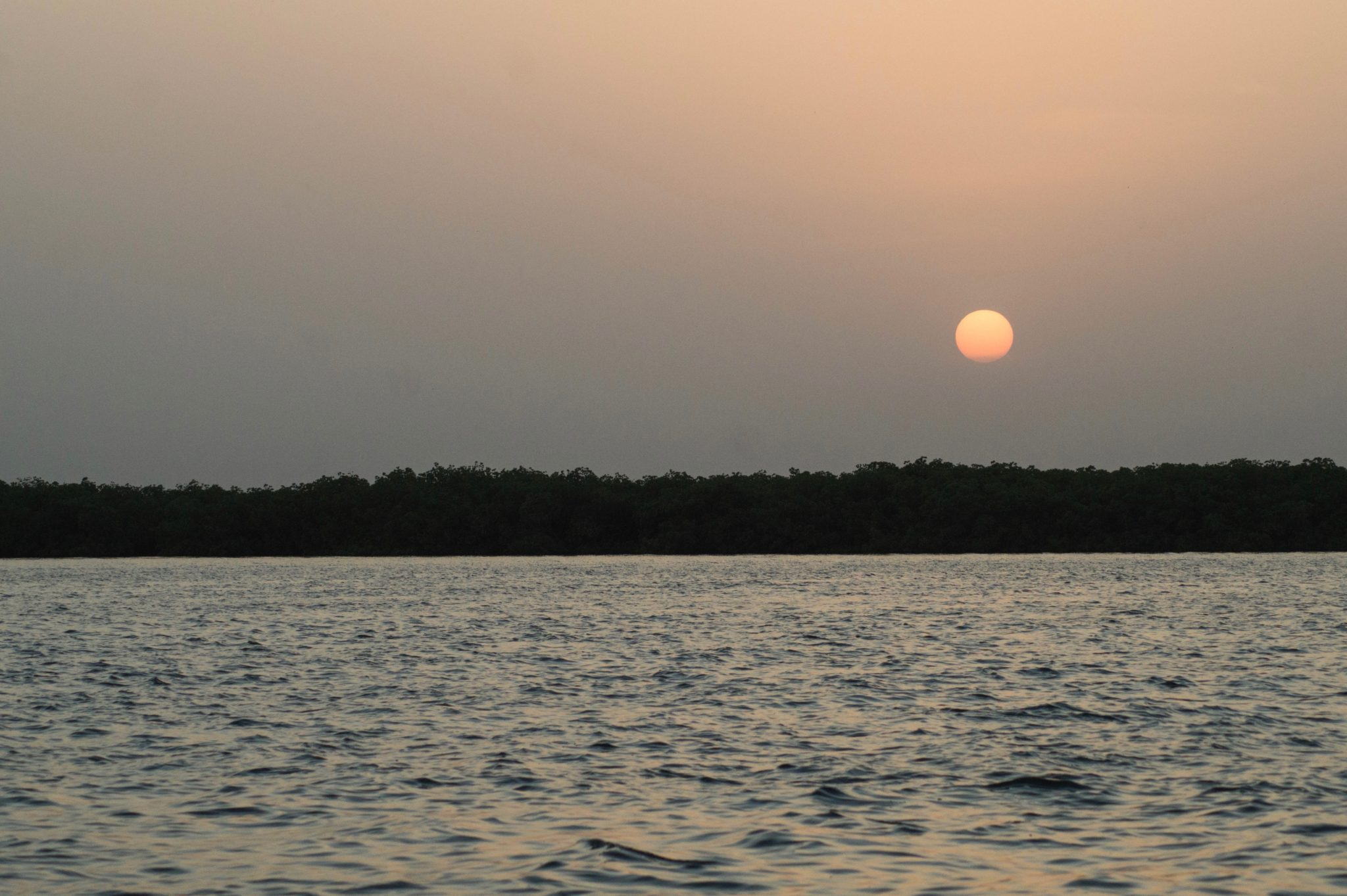 Picturesque sunset at the Sine Saloum Delta in Senegal