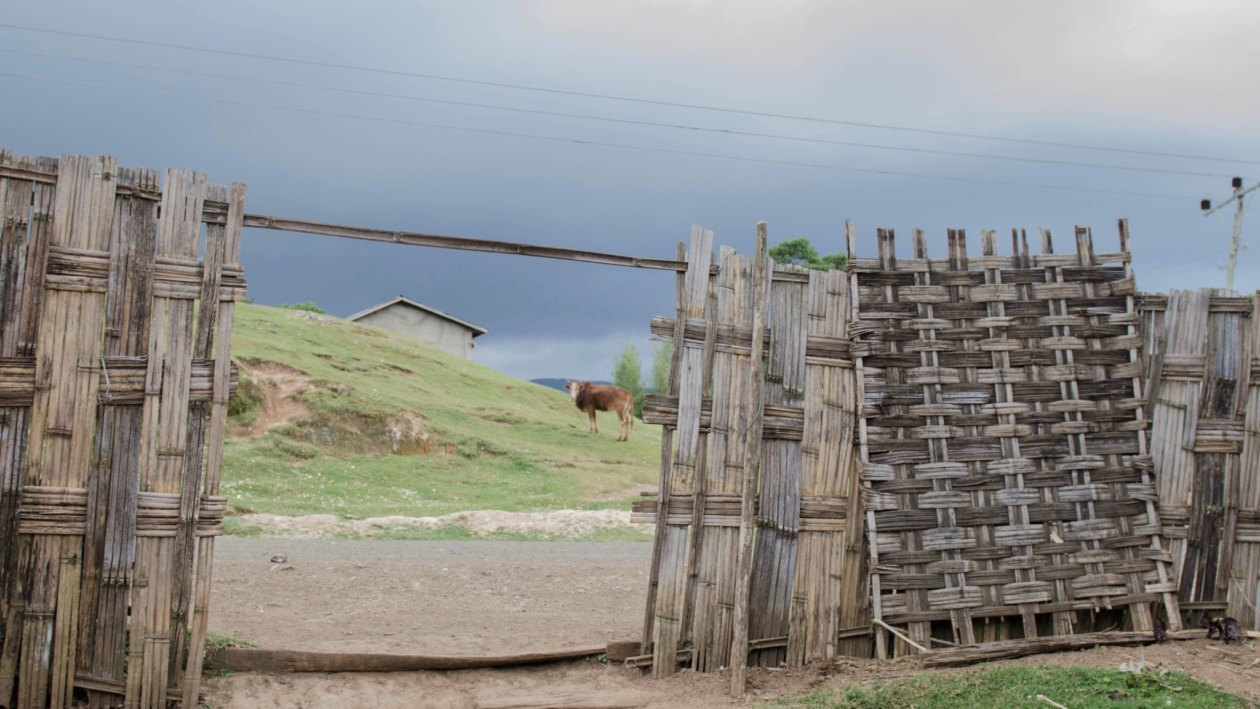 Dorze People Ethiopia: Visiting the Dorze village is a must in Southern Ethiopia