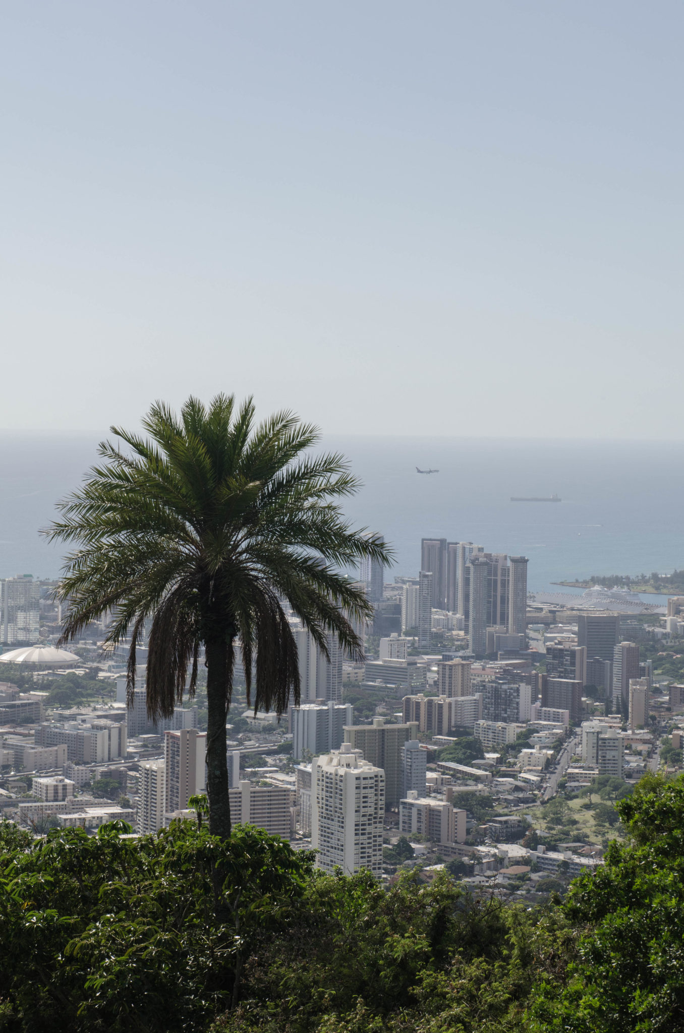Hawaii Guide: The capital Honolulu is best watched from high up above.