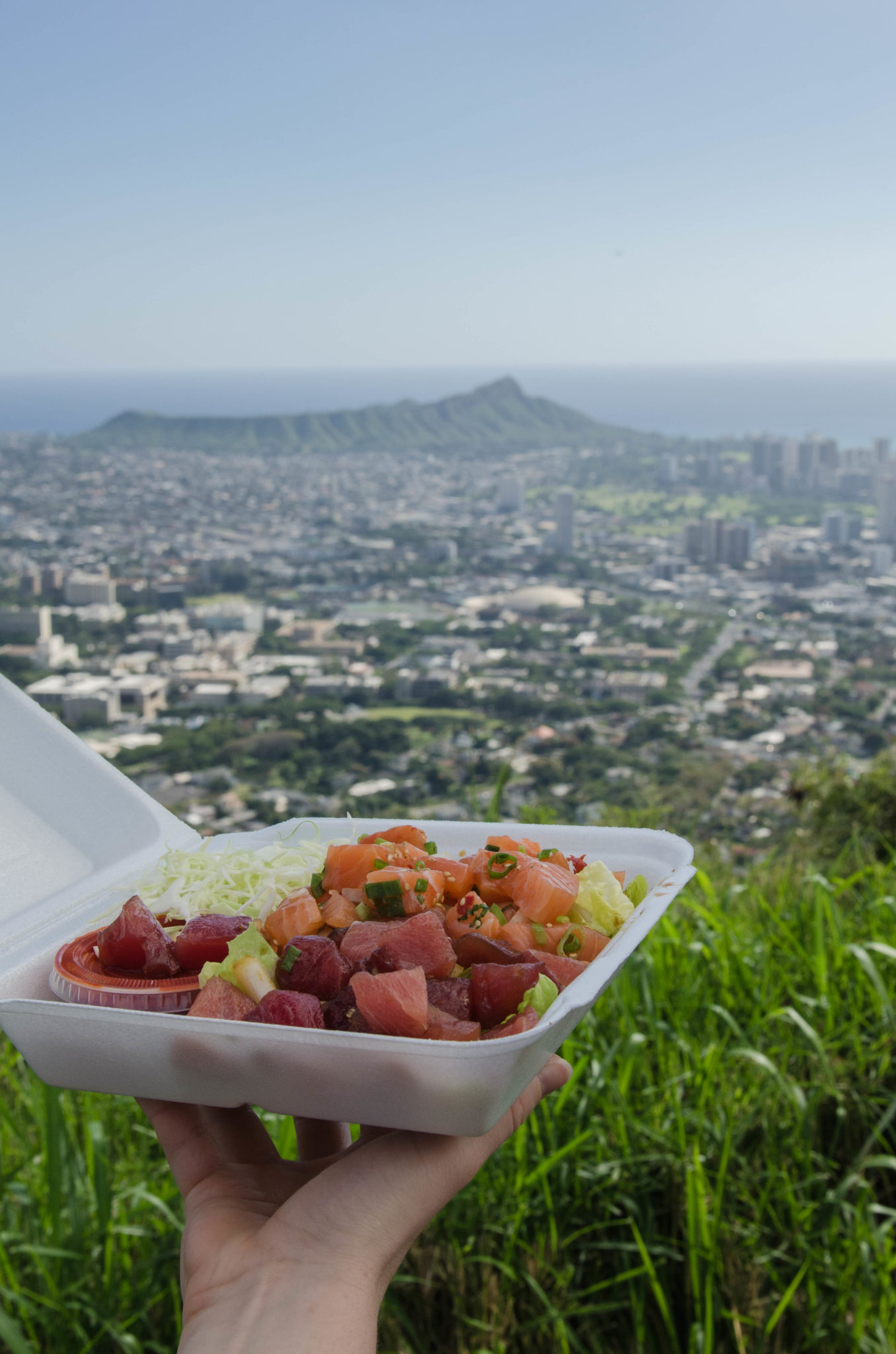 Hawaii Guide: Poke Bowl is one of the main dishes served in Hawaii and belongs to the best of Hawaii.